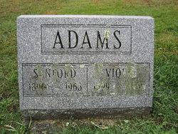 Viola <i>Wolfe</i> Adams