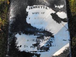 Henrietta Duke
