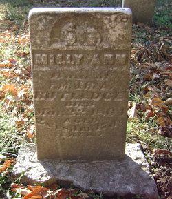 Milly Ann Rutledge