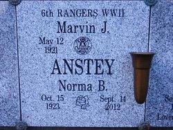 Marvin John Marv Anstey