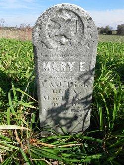 Mary E Dick
