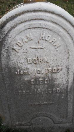 Adam Horn