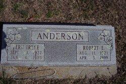 Robert Ervin Anderson