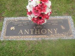 Arlee Anthony