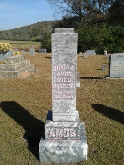 Silvia A. Amos