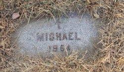 Michael B Pozorski