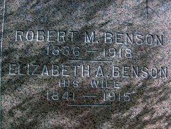 Elizabeth A. Benson