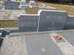 George N Akins
