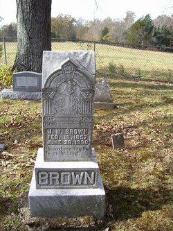 J W Brown