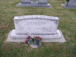 Mason Lee Brawley