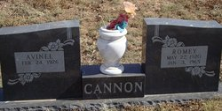 Thomas Romey Cannon