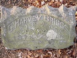 Charles Harvey Briggs