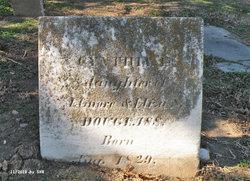 Cynthia E. Douglass