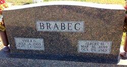 Viola <i>Marsicek</i> Brabec