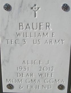 Alice J <i>Rogers</i> Bauer