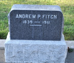 Andrew P Fitch