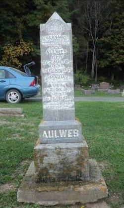 Bernard Aulwes