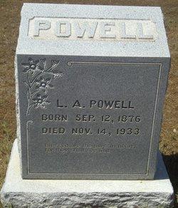 Lee Andrew Powell