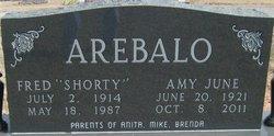 Amy June <i>Terrill</i> Arebalo