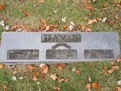 Susan Elizabeth Susie <i>DeLozier</i> Davis