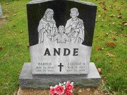Harold Ande