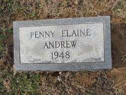 Penny Elaine Andrew