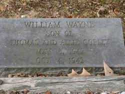 William Wayne Copley