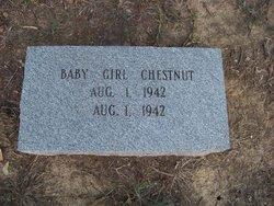 Baby Girl Chestnut