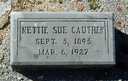 Nettie Sue Cauthen