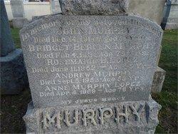 Bridget <i>Bergen</i> Murphy