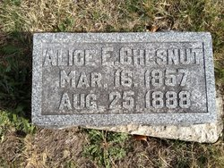 Alice Elizabeth <i>Hawkins</i> Chesnut