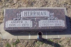 Josephine E <i>Depperschmidt</i> Herrman