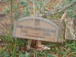 Elijah Whitt Holland