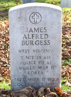 Sgt James Alfred Burgess