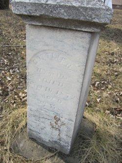 Gottlieb Schaele