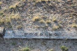 John M Gooding