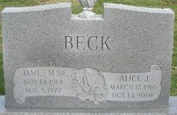 Alice J Beck