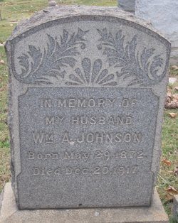 William Anderson Johnson