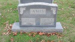 Samuel W Amis