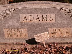 John Henry Adams, Sr