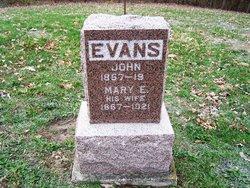 Mary E. Evans