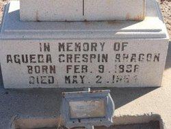 Agueda Crespin Aragon