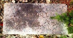 Ann Annie <i>Johns</i> Barrett