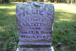 Tillie E. Tattnall