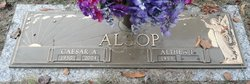 Caesar A Alsop