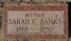 Sarah Elizabeth Beth <i>Owens</i> Banks