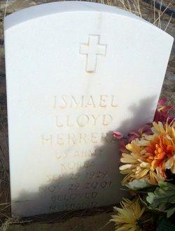 Ismael Lloyd Herrera