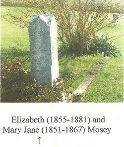 Elizabeth Lizzie Mosey