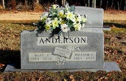 William F Anderson