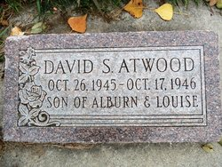 David S Atwood